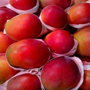 Apple Mango Box