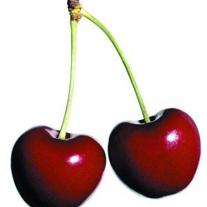 Cherry Bag車厘子