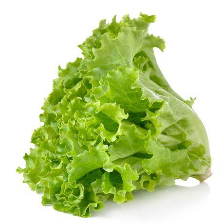 green leaf lettuce唐生菜 yorkmart