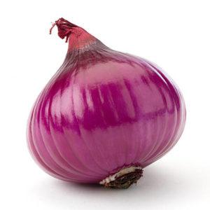 Purple Onion紫洋蔥