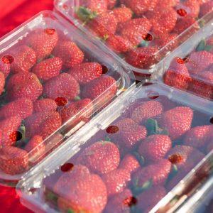 Strawberry Box盒装草莓